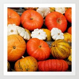 Autumn Photography - Orange And White Pumpkins Art Print