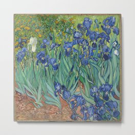 Vincent van Gogh's Irises Metal Print