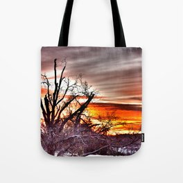 Thanksgiving Day 2013 Tote Bag