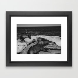 Water Puppies Framed Art Print