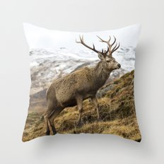 Royal Red Deer Stag in Winter Throw Pillow