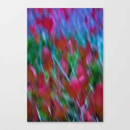 The Colors of Love Canvas Print