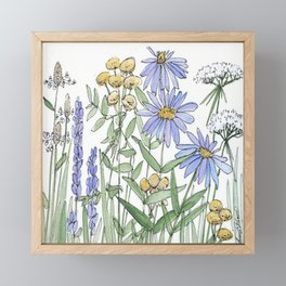 Asters and Wild Flowers Botanical Nature Floral Framed Mini Art Print