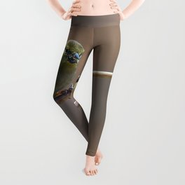 Early Spring Goldfinch Leggings