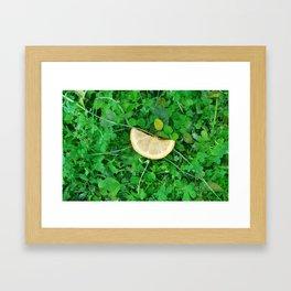 Lemon Grass Framed Art Print