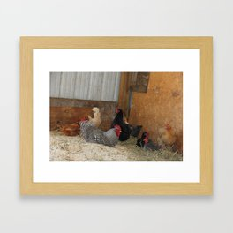 Hens and Rooster Framed Art Print