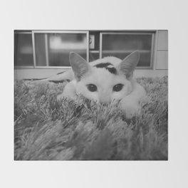 kitty ready to pounce Throw Blanket