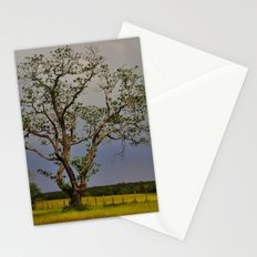 End of the Drought Stationery Cards