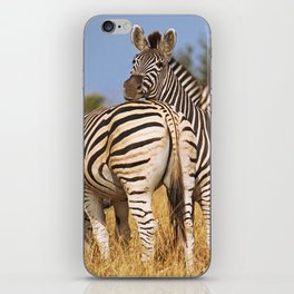 Life of the Zebras, Africa wildlife iPhone Skin