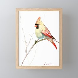 Northern Cardinal (female Cardinal bird) Framed Mini Art Print