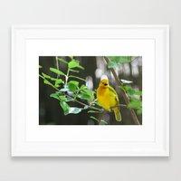 wildlife Framed Art Prints featuring Wildlife by sannngat