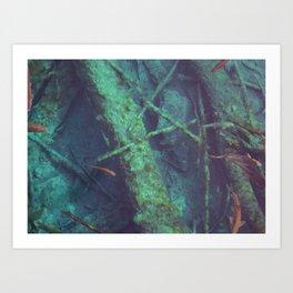 lost sea Art Print