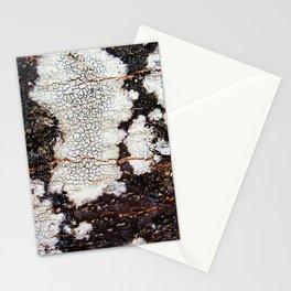 Tree bark naural pattern 2 Stationery Cards