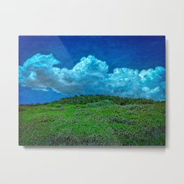 The Great Outdoors by Dee Flouton Metal Print