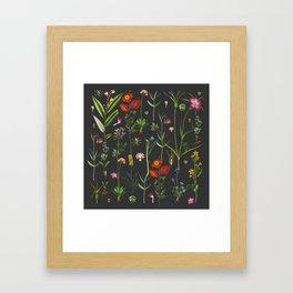 Exquisite Botanical Framed Art Print