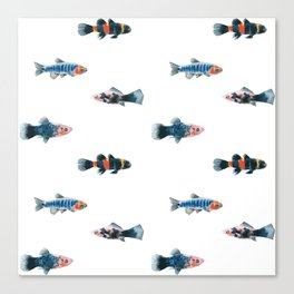 Swim With The Fishes Canvas Print