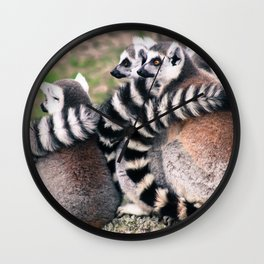 Ring Tailed Lemurs in Portugal - by Cheryl Gerhard Wall Clock