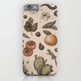 Florida Nature Walks iPhone Case