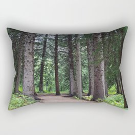 Wandering Rectangular Pillow