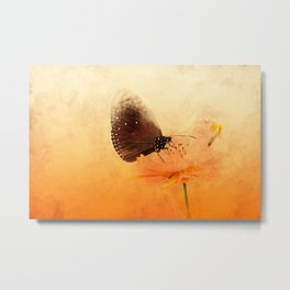 Butterfly in summer breeze Metal Print
