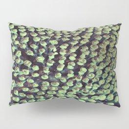 Oxidized Landscape Lime Pillow Sham