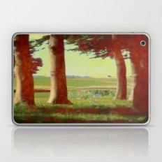 Daisy's in the field Laptop & iPad Skin