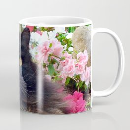 Pomponio Mela in the magic garden Coffee Mug