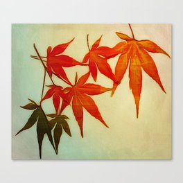 Red Leaves v1 Canvas Print