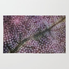 Organic Space and Structure Rug