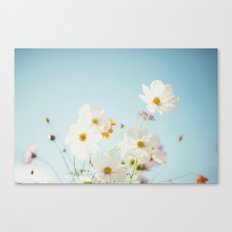 Garden of flowers. Canvas Print