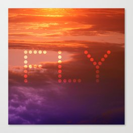 Sunset Fly Canvas Print