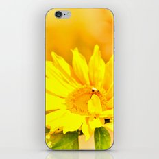 Imperfect Beauty iPhone & iPod Skin