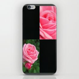 Pink Roses in Anzures 2 Blank Q2F0 iPhone Skin