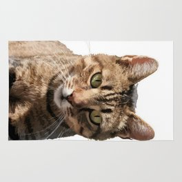 Portrait Of A Cute Tabby Cat With Direct Eye Contact Isolated Rug