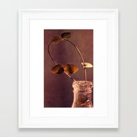 brown Framed Art Prints featuring brown  by Claudia Drossert