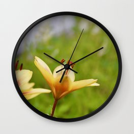 Lilly flower on green background Wall Clock