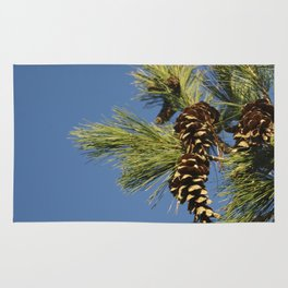 Pine cones and branches against a blue autumn sky Rug