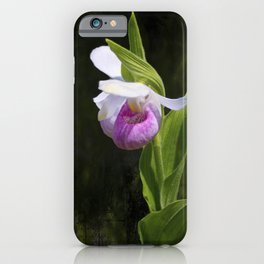Showy Lady Slipper Orchid iPhone Case