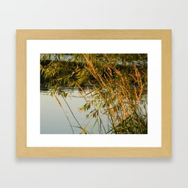 Gentle Breeze Framed Art Print