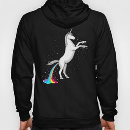 Where Rainbows Come From Hoody