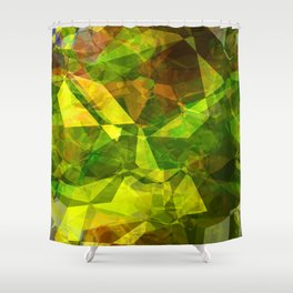 Cactus Garden Abstract Polygons 1 Shower Curtain