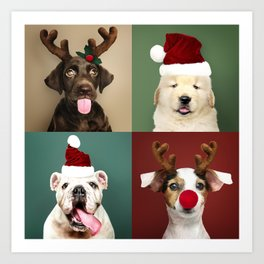 Set Of Doggy Christmas Portraits Art Print