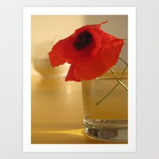 Italian Poppies Art Print