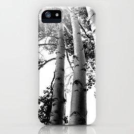 Up Aspens iPhone Case