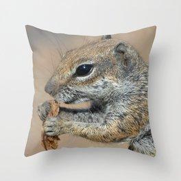 Squrriel Throw Pillow