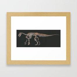 Iguanodon Bernissatnis Skeleton Study (No Labels) Framed Art Print