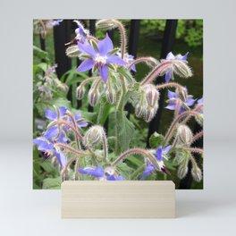 Fairy Flowers Mini Art Print