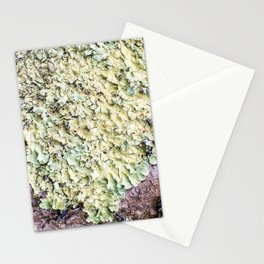 Beautiful messthetics bright green lichen on tree trunk bark macro Stationery Cards