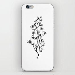Larkspur iPhone Skin