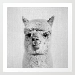 Alpaca - Black & White Art Print